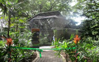 paga-hill-estate-gudmundur-gummi-fridriksson-port-moresby-nature-park