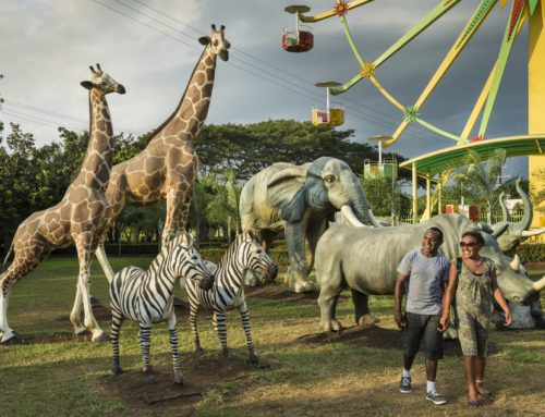 Family fun at Adventure Park Port Moresby